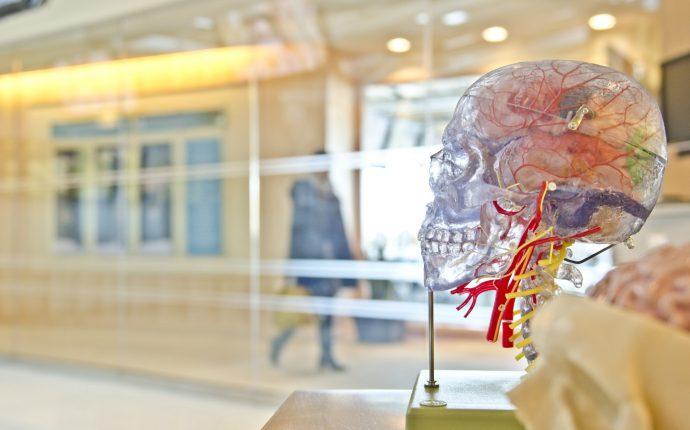 Adolescência, autonomia e pesquisa em seres humanos