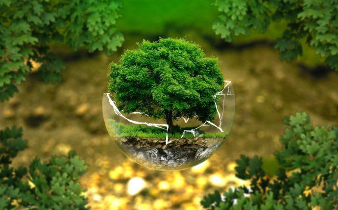 Inapropriabilidade da Terra como solo e o Governo da Natureza como algo comum, bases para uma Bioética Ambiental