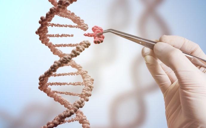 Direitos fundamentais, democracia e o Projeto Genoma Humano: bioética e biopolítica