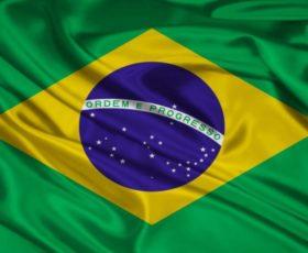Bioética: crítica ao principialismo, Constituição brasileira e princípio da dignidade humana
